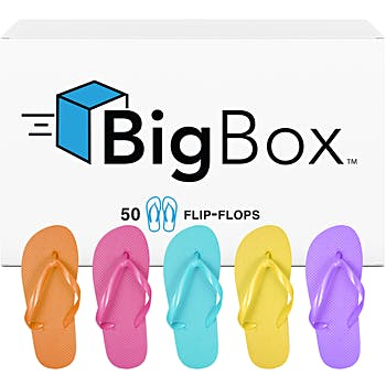 5be27227c741b Wholesale Big Box Women s Basic Flip-Flops - Bright Assorted Colors (SKU  2272718) DollarDays