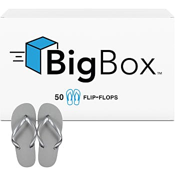 246b2dd18fe Big Box of Women s Basic Flip-Flops - Silver