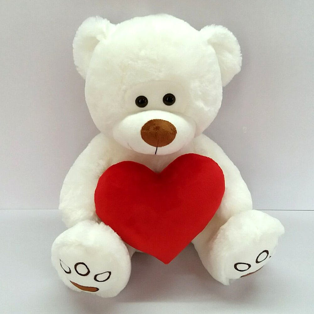 Unbranded RED Valentine Day 15 Plush Bear Saying I Love You Voice Holding Heart /& Rose