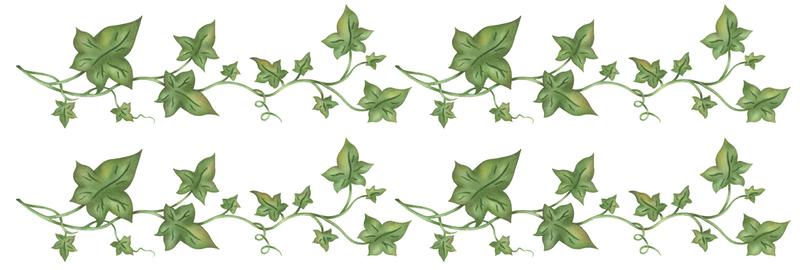 wholesale home decor rub ons 4 x12 trailing ivy border sku 636705